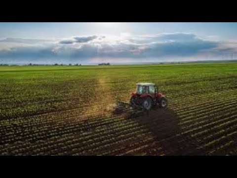 Farmers STOP supplying food – bring the ANC to their