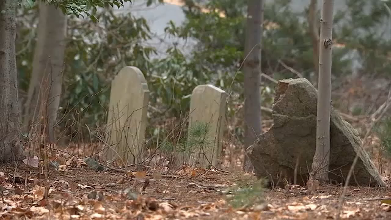 Long Island town working to ID those buried at hidden