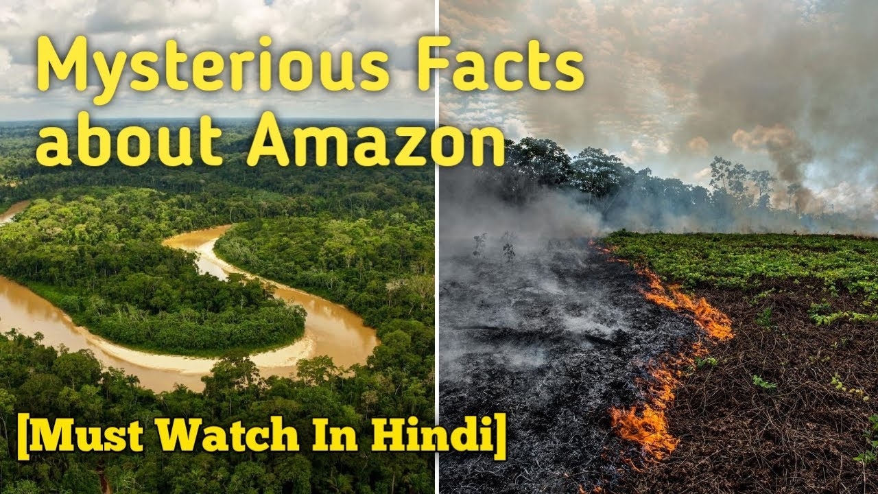 Mysterious Facts about Amazon forest || अमेज़न जंगल के खतरनाक