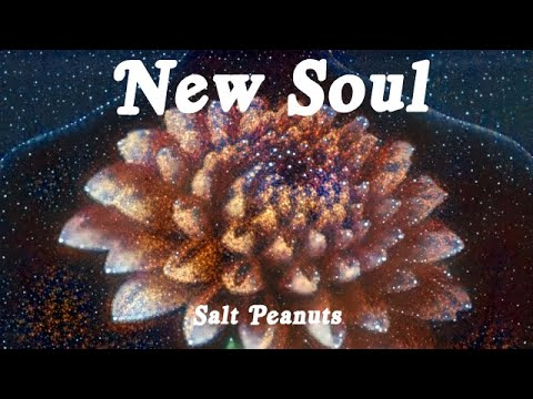 Salt Peanuts – New Soul (Official Music Video)