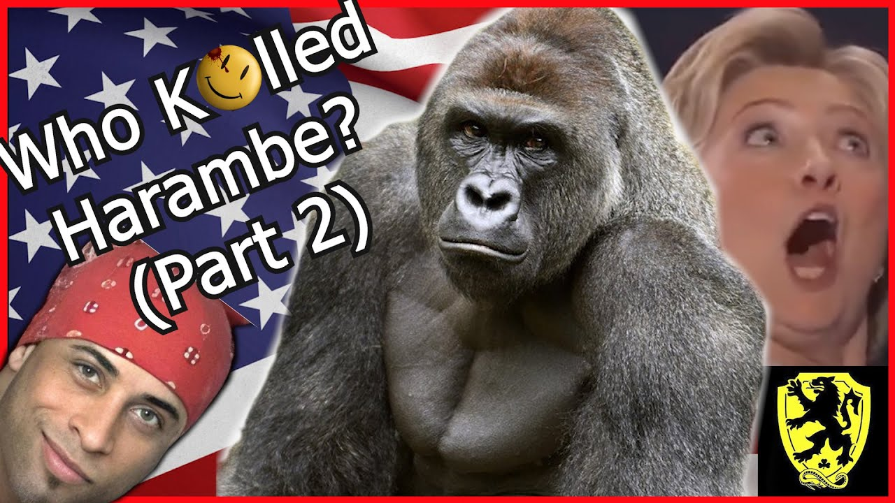 Why was Harambe Almost President? Who was Harambe the Gorilla?